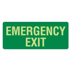 350x145mm - Metal - Luminous - Emergency Exit